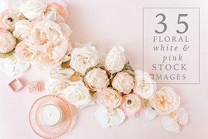 BUNDLE Pink Floral Stock Images