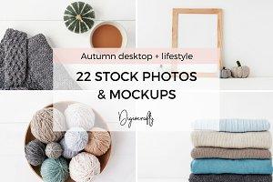 Autumn stock photos and mockups