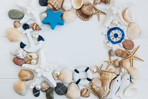 Shells, seastars and a blank postcar