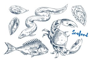 Different Marine Animals as Seafood