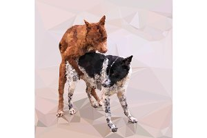 Low poly male dog cover female dog