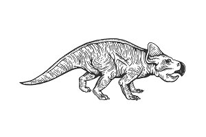 Protoceratops dinosaur engraving