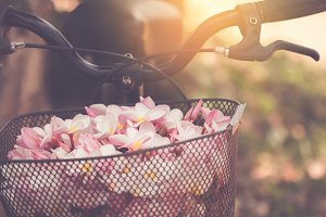 flowers on a bicycle basket.