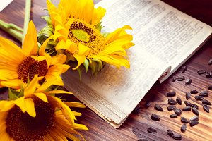 sunflowers and an open book