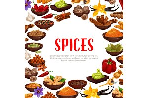 Vector poster of spices and