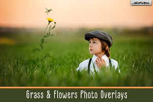 Grass & Flowers Photo Overlays