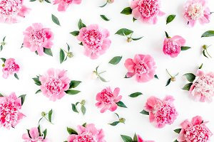 Pattern of pink peony flowers.