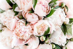 Bouquet of peonies.