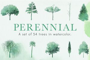 Perennial Tree Watercolor Shapes