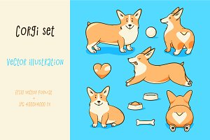 Welsh corgi dog, vector illustration