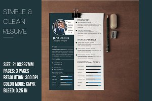 Simple & Clean Resume CV