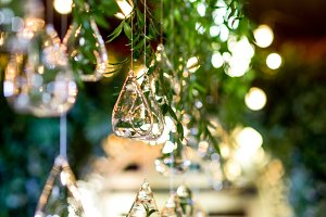 Yellow lamps hang from green garland
