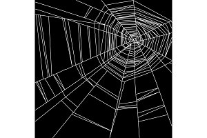 white spider web isolated on the