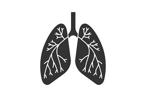 Human lungs with bronchi glyph icon
