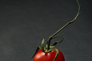 Cherry tomato over dark background