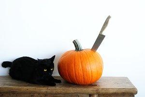 Black Cat & Pumpkin