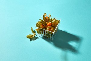 Physalis in a basket isolated on a
