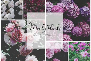 Moody Florals Stock Photo Set