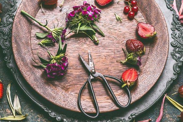Food Stock Photos: VICUSCHKA -  Seasonal still life with fruits