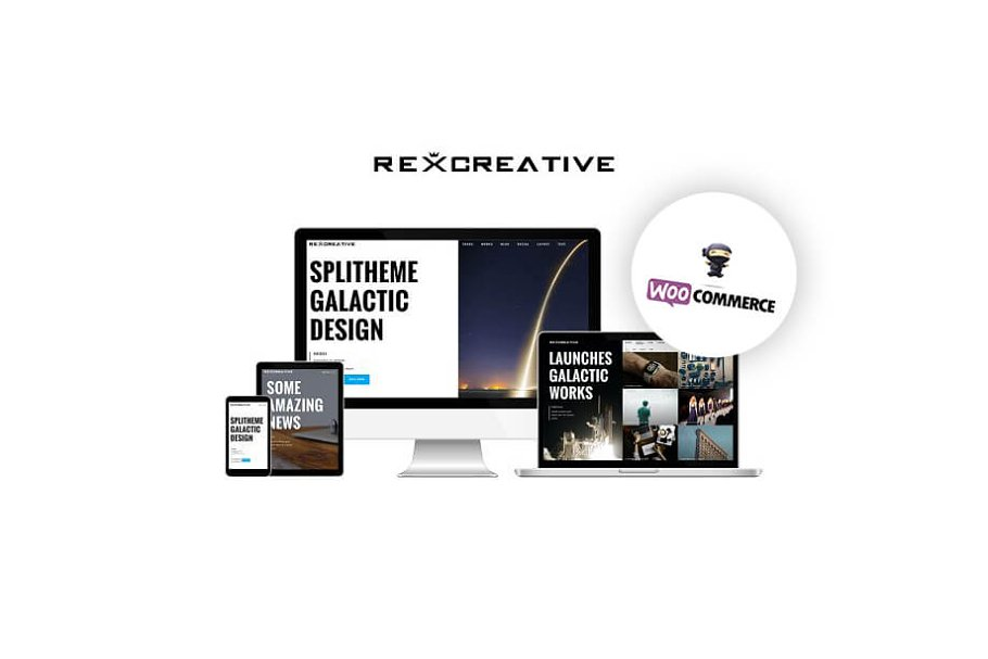Theme RexCreative ~ WordPress Portfolio Themes ~ Creative Market