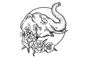 Elephant animal engraving vector