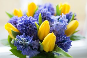Yellow and lilac flowers. Spring