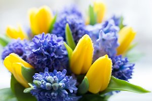 Beatiful yellow and lilac flowers