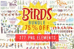 birds bundle watercolor clipart