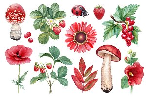 Red summer nature illustrations kit