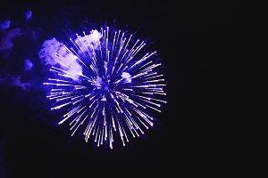 Stunning fireworks blue flowers