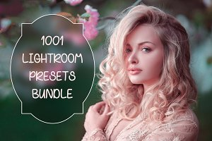 [97% OFF] 1001 Lightroom Collection