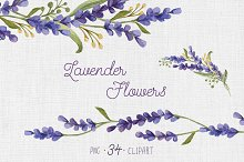 Watercolor set with Lavender Flowers