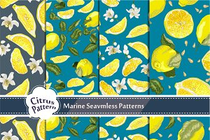 Set with Seamless Citrus Pattern