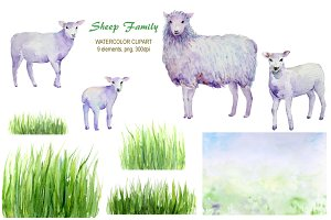 Watercolor Sheep and Lambs
