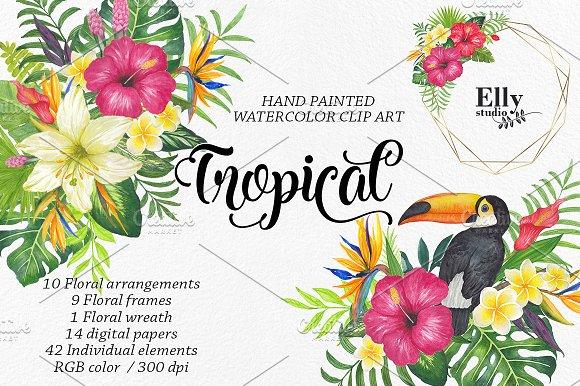 20%OFF Watercolor Tropical Clip Art