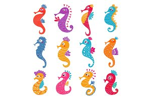 Seahorse vector seafish character or