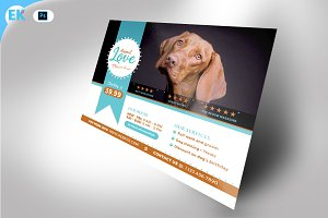 Animal Care Flyer (11x8.5 and 6x4)