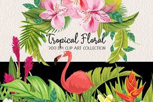 Tropical Floral Plants & Frames Set