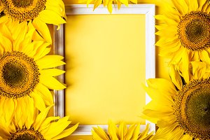 Frame of yellow sunflowers on yellow