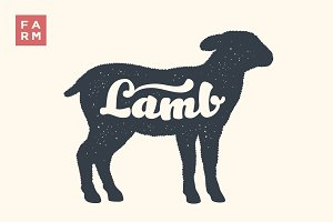 Lamb. Lettering, typography