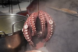Galician octopus cooked in a pot