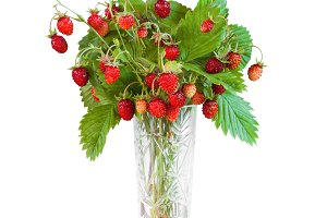 Bouquet of wild strawberry isolated