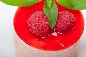 raspberry mousse dessert cake 047.jpg