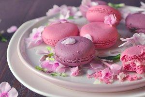 strawberry cake macarons