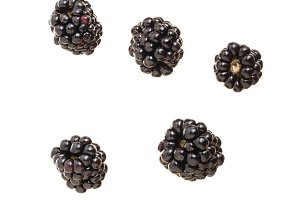 falling blackberry fruits isolated