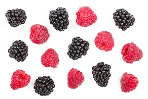 blackberry and raspberry isolated on