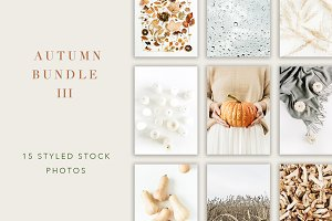 Autumn Bundle 3