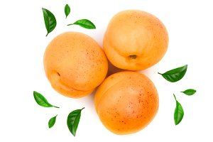 Apricot fruit with leaves isolated