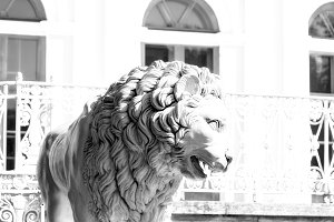 Cast iron statue of lion