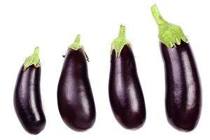 eggplant or aubergine isolated on